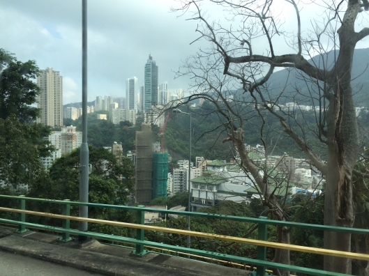 A view from our shuttle bus. Hairpin turns  sheer drops don't slow the drivers down.