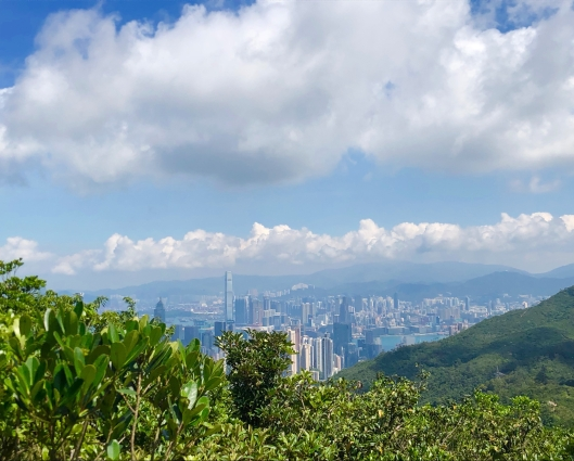 View of Hong Kong from Violet Hill